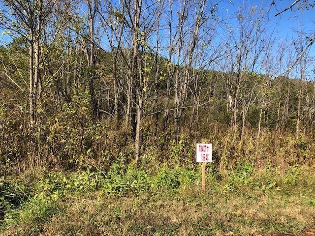 Lot 11 Mooresburg Springs Road, Mooresburg, TN 37811 (MLS #9904921) :: Conservus Real Estate Group