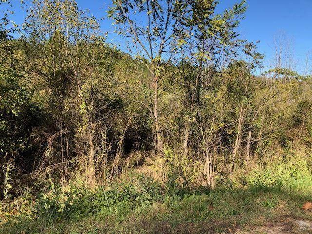 Lot 12 Mooresburg Springs Road, Mooresburg, TN 37811 (MLS #9904924) :: Conservus Real Estate Group