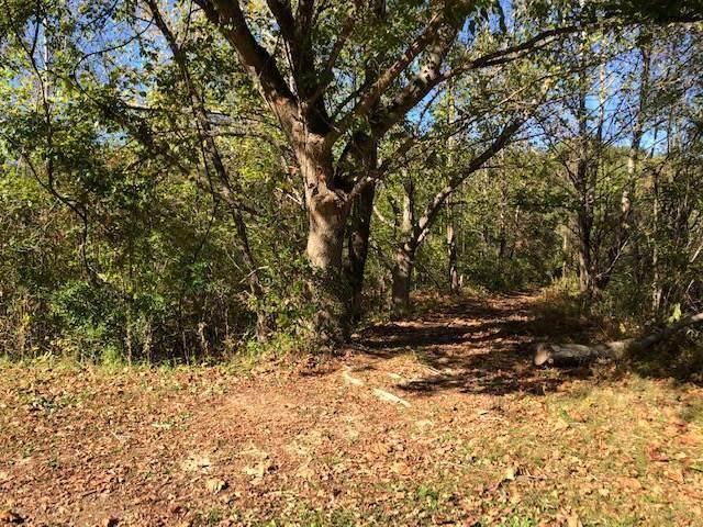 Lot 13 Mooresburg Springs Road, Mooresburg, TN 37811 (MLS #9904926) :: Conservus Real Estate Group