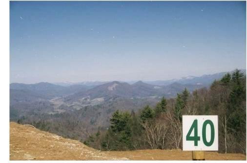 1012 Locust Lane, Butler, TN 37640 (MLS #9905436) :: Highlands Realty, Inc.