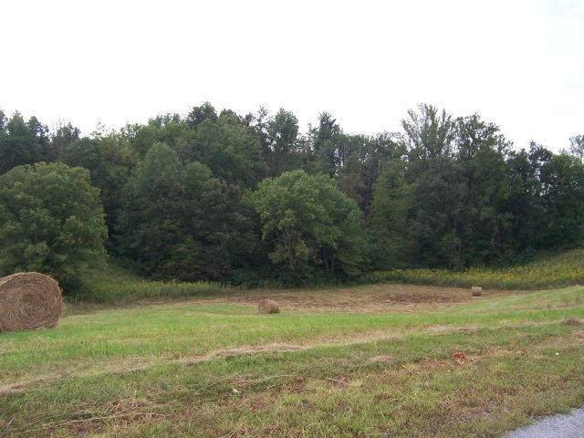 0 Lake Bend Court, Lot 22, Abingdon, VA 24211 (MLS #9905704) :: Highlands Realty, Inc.