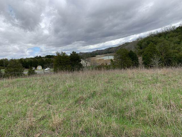 11 Acres Jim Henry Road, Dandridge, TN 37725 (MLS #9906436) :: The Baxter-Milhorn Group