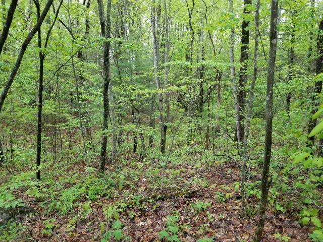 Lot 1 Middle Creek Road, Afton, TN 37616 (MLS #9907853) :: Conservus Real Estate Group