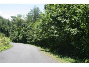 Tbd Callalantee Drive, Mountain City, TN 37683 (MLS #9908051) :: Bridge Pointe Real Estate