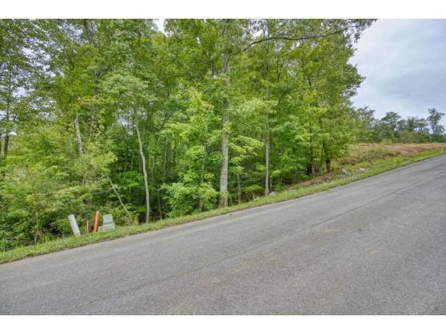 Tbd Lot 50 Sciota Rd, Unicoi, TN 37692 (MLS #9908252) :: Bridge Pointe Real Estate