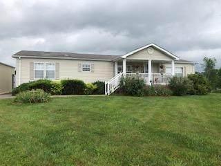 315 Chase Court, Mount Carmel, TN 37645 (MLS #9908790) :: Conservus Real Estate Group