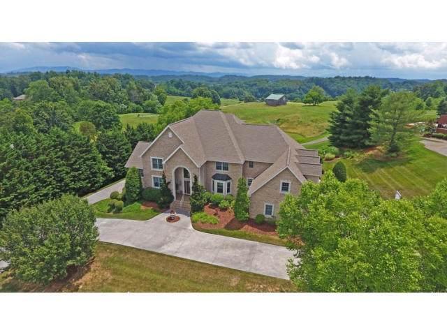 113 Chestnut Ridge Drive, Jonesborough, TN 37659 (MLS #9908849) :: Tim Stout Group Tri-Cities