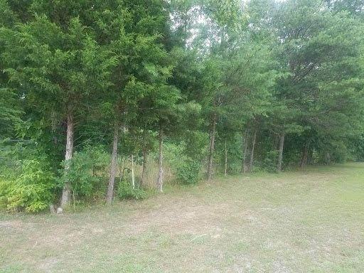 Tbd Guy Matthews Lane, Mohawk, TN 37810 (MLS #9909893) :: Highlands Realty, Inc.