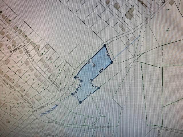1606 King Springs Road, Johnson City, TN 37601 (MLS #9909950) :: Bridge Pointe Real Estate
