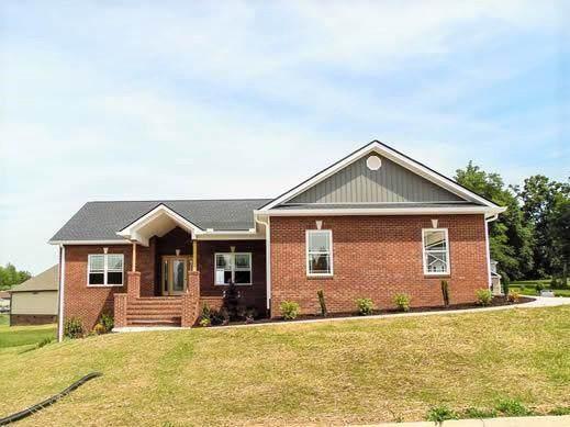 9 Planted Stone Court, Jonesborough, TN 37659 (MLS #9910086) :: Conservus Real Estate Group