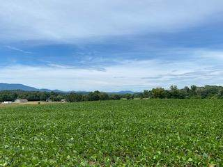 8 Tn-107 Cutoff, Afton, TN 37616 (MLS #9911406) :: Conservus Real Estate Group