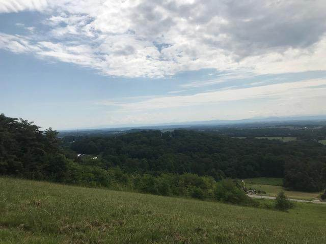 0 Scenic View Drive, Talbott, TN 37877 (MLS #9911925) :: Bridge Pointe Real Estate