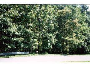 Lot 44 Monticello Drive, Bristol, VA 24202 (MLS #9911933) :: Conservus Real Estate Group