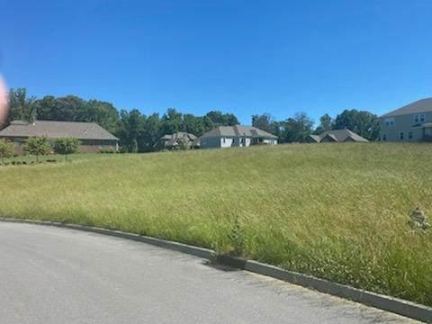 7045 Cardiff Way, Piney Flats, TN 37686 (MLS #9914191) :: Bridge Pointe Real Estate