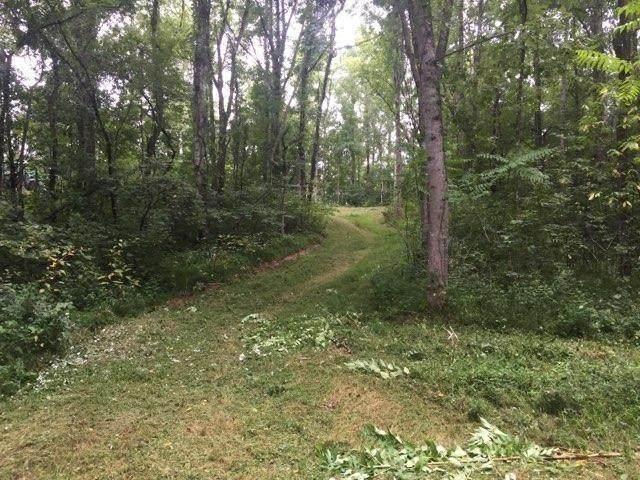 0 Locust Grove Road, New Tazewell, TN 37825 (MLS #9918040) :: Red Door Agency, LLC