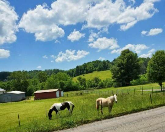 0 Kidwell Ridge Road, Morristown, TN 37814 (MLS #9918727) :: Red Door Agency, LLC