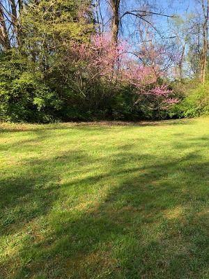 00 Redbud Drive, Greeneville, TN 37743 (MLS #9921488) :: Conservus Real Estate Group