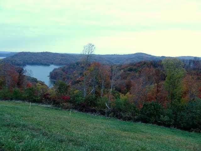 50a Swan Ridge Road, Celina, TN 38551 (MLS #9921998) :: Highlands Realty, Inc.