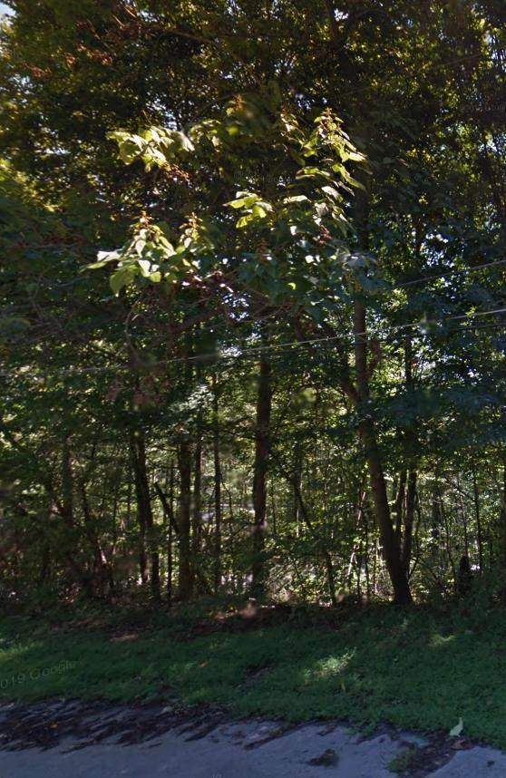 Tbd Thorngrove Drive Drive, Bloomingdale, TN 37660 (MLS #9922661) :: Conservus Real Estate Group