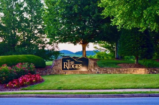 141 Laurel Ridge Drive, Jonesborough, TN 37659 (MLS #9924275) :: Conservus Real Estate Group