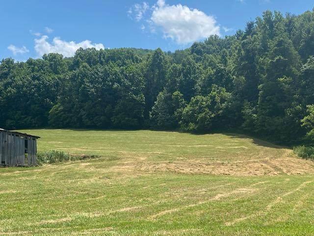 Tbd F Dry Creek Road, Erwin, TN 37650 (MLS #9924411) :: Highlands Realty, Inc.