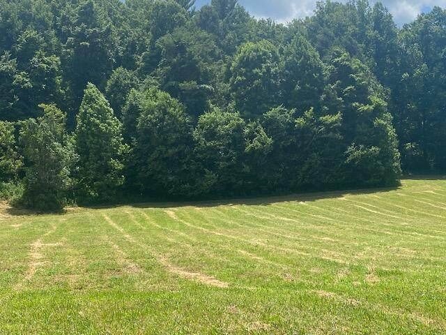 Tbd H Dry Creek Road, Erwin, TN 37650 (MLS #9924414) :: Highlands Realty, Inc.