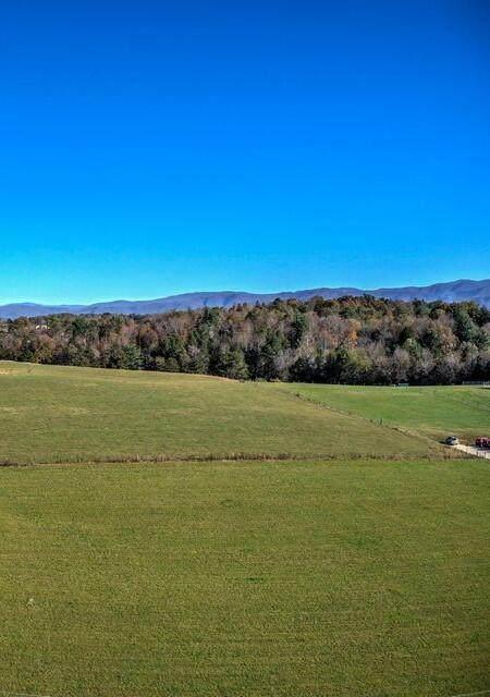 0 Chuckey Pike, Chuckey, TN 37641 (MLS #9924506) :: Bridge Pointe Real Estate