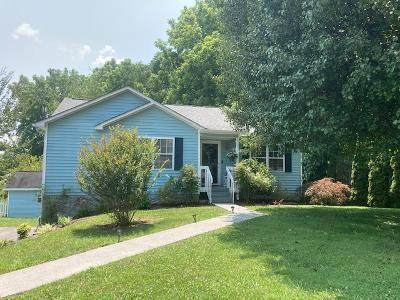 233 Ridgeview Road Drive, Gray, TN 37615 (MLS #9925104) :: Conservus Real Estate Group