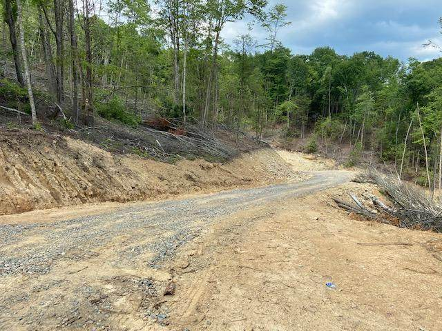 Tbd Forge Creek Road, Mountain City, TN 37683 (MLS #9925132) :: Conservus Real Estate Group