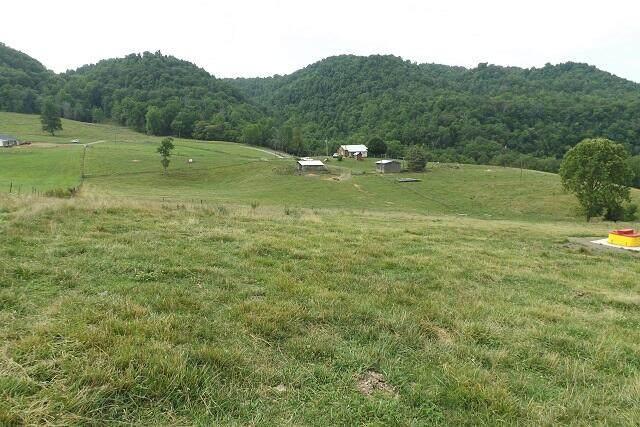 1921 Dean Hollow Rd, Nickelsville, VA 24271 (MLS #9925682) :: Conservus Real Estate Group