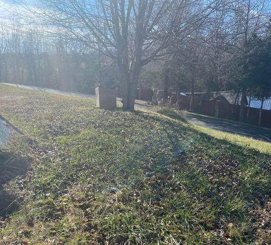402 Whitehead Road Road, Bluff City, TN 37618 (MLS #9926108) :: Bridge Pointe Real Estate