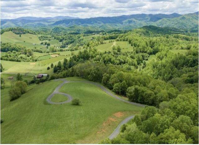 21 W Of Dry Hill Rd, Butler, TN 37640 (MLS #9926125) :: Tim Stout Group Tri-Cities