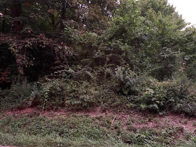 0 Possum Hollow Rd, Elizabethton, TN 37643 (MLS #9926524) :: Conservus Real Estate Group