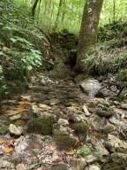 38330 Wilderness Road - Photo 4