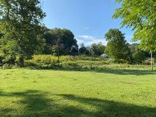 16199 Rust Hollow Road, Abingdon, VA 24210 (MLS #9928151) :: Highlands Realty, Inc.