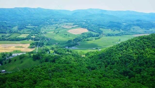 1277 Mining Town Road, Mountain City, TN 37683 (MLS #9928209) :: Red Door Agency, LLC