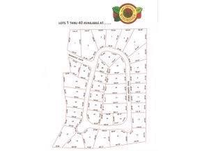 Lot 40 Rose Garden Circle - Photo 1