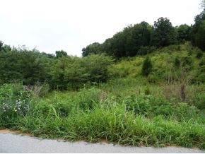 Lot 1 Roaring Fork Road - Photo 1