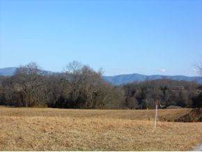 101 Bill Road, Piney Flats, TN 37686 (MLS #315135) :: Conservus Real Estate Group