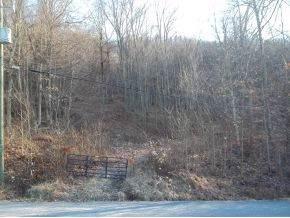 1016 Boyd Path Court, Kingsport, TN 37660 (MLS #343089) :: Highlands Realty, Inc.