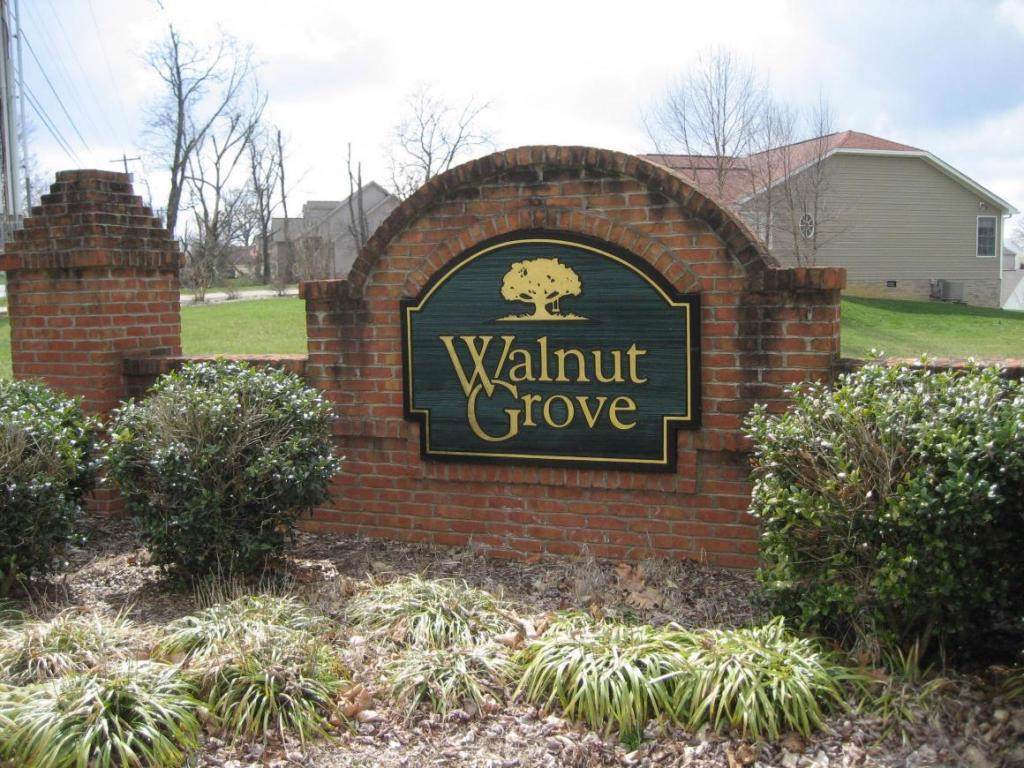 Lot 83 Walnut Grove Court - Photo 1