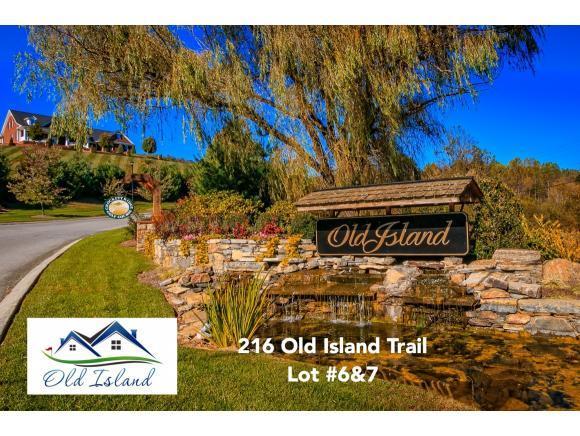 216 Old Island Trail, Kingsport, TN 37664 (MLS #373889) :: Highlands Realty, Inc.