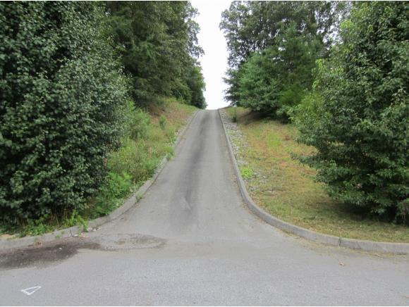 416 Grace Hills Drive, Blountville, TN 37617 (MLS #377371) :: Highlands Realty, Inc.