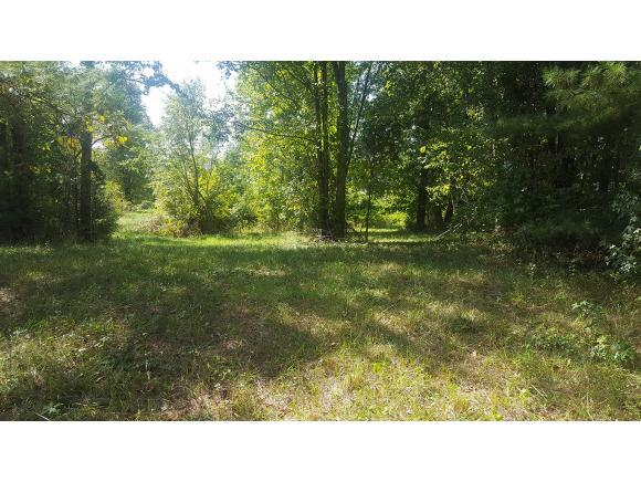 Lot 11 Sherwood Drive, Church Hill, TN 37642 (MLS #382648) :: Highlands Realty, Inc.