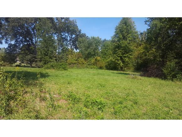 Lot  9 Robin Hood Lane, Church Hill, TN 37642 (MLS #382649) :: Highlands Realty, Inc.