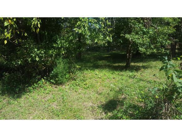 Lot 15 Sherwood Drive, Church Hill, TN 37642 (MLS #382650) :: Highlands Realty, Inc.