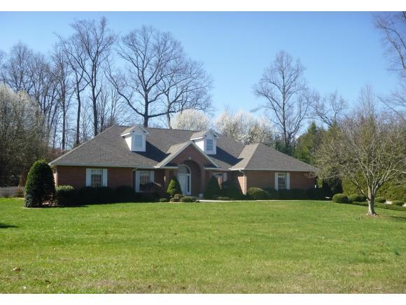 1005 Stagshaw Lane, Kingsport, TN 37660 (MLS #384012) :: Highlands Realty, Inc.