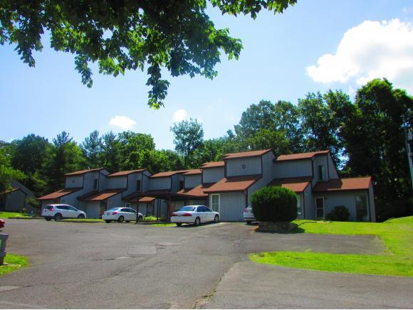 780 Hamilton Drive D-5, Blountville, TN 37617 (MLS #393716) :: Highlands Realty, Inc.
