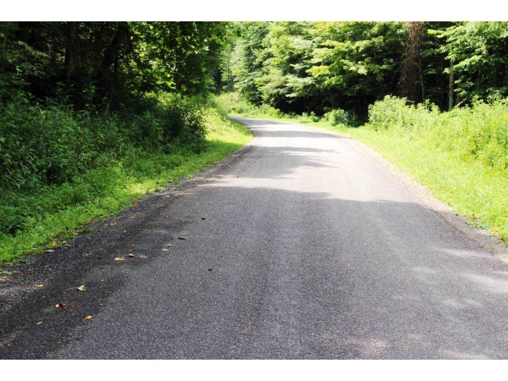 000 Copperhead Hollow Road - Photo 1
