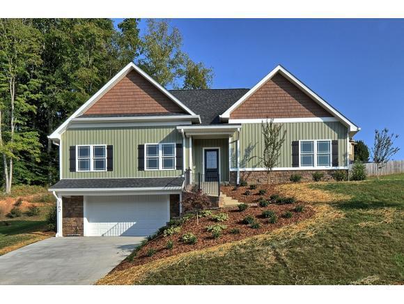 162 Cameron Court, Gray, TN 37615 (MLS #396611) :: Highlands Realty, Inc.